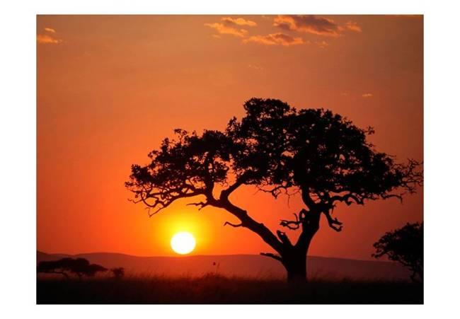 Fototapeta - Afryka: zachód słońca