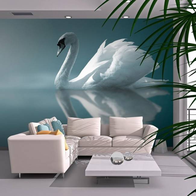 Fototapeta - Biały łabędź
