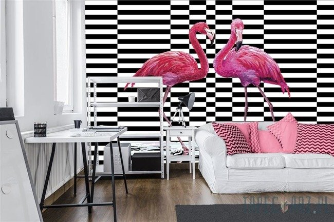 Fototapeta Flamingi 11051