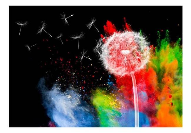 Fototapeta - Kolorowy żywioł