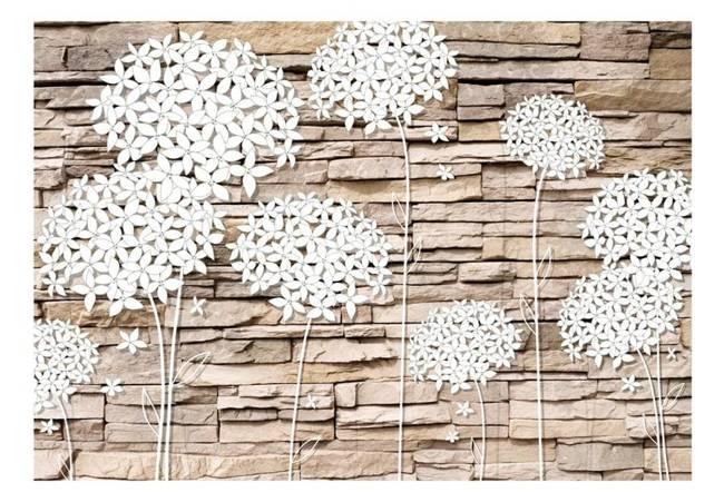 Fototapeta - Kwiaty na kamieniu