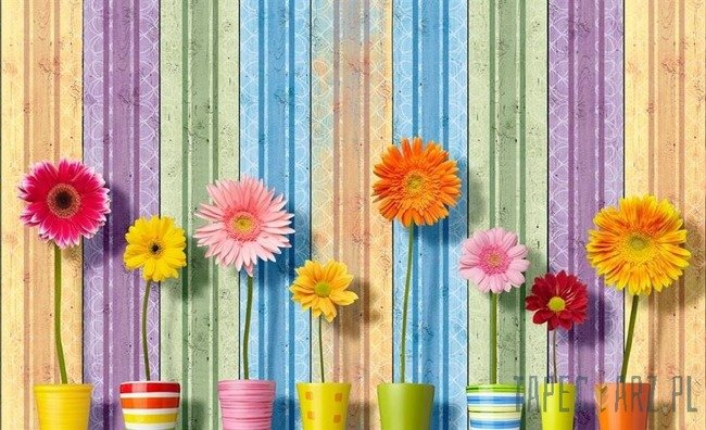 Fototapeta Kwiaty na kolorowym tle 3708
