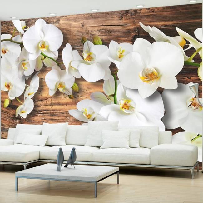 Fototapeta - Leśna orchidea