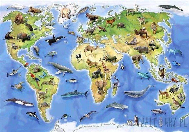 Fototapeta Selfies - mapa świata 12844