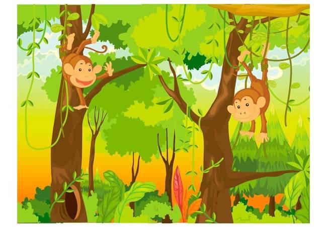 Fototapeta - dżungla - małpy