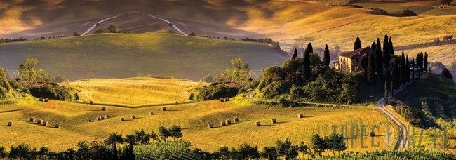 Fototapeta na flizelinie Toskania 1545VEE