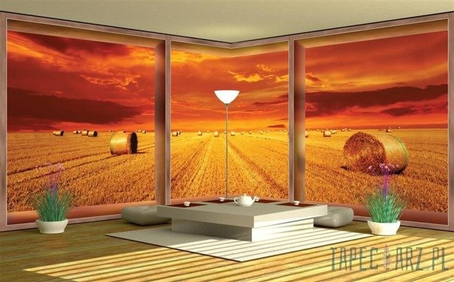 Fototapeta na flizelinie Widok na pole przez okno 445VEE