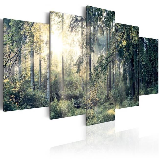 Obraz - Baśniowy krajobraz