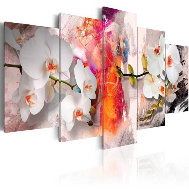 Obraz - Kolorowe tło i storczyki