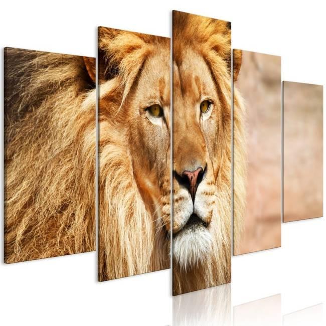 Obraz - Król zwierząt (5-częściowy) szeroki pomarańczowy