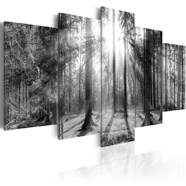 Obraz - Las wspomnień