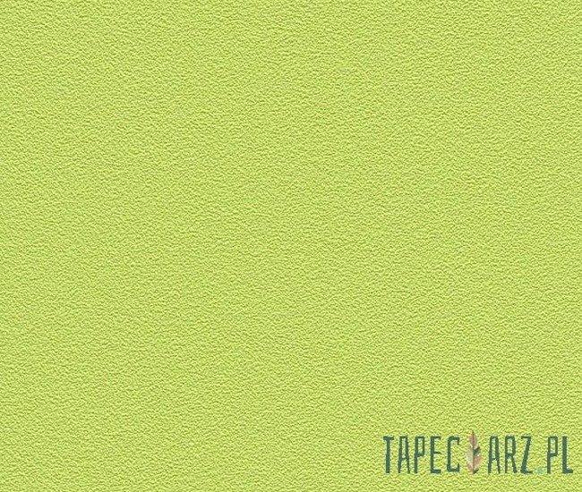 Tapeta ścienna RASCH 469035 Prego 2014