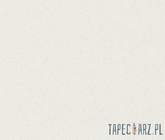 Tapeta ścienna RASCH 489507 Prego 2014