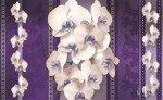 Fototapeta Białe storczyki na kwiecistym wzorze 1294