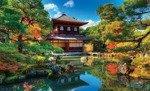 Fototapeta Ogród japoński 653