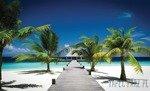 Fototapeta Plaża 891