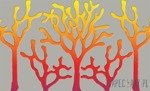 Fototapeta Pomarańczowy koralowiec 880