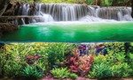 Fototapeta Rośliny, rybki i wodospad 3354