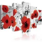 Obraz - Szkarłatne kwiaty